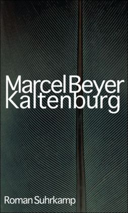 Beyer: Kaltenburg